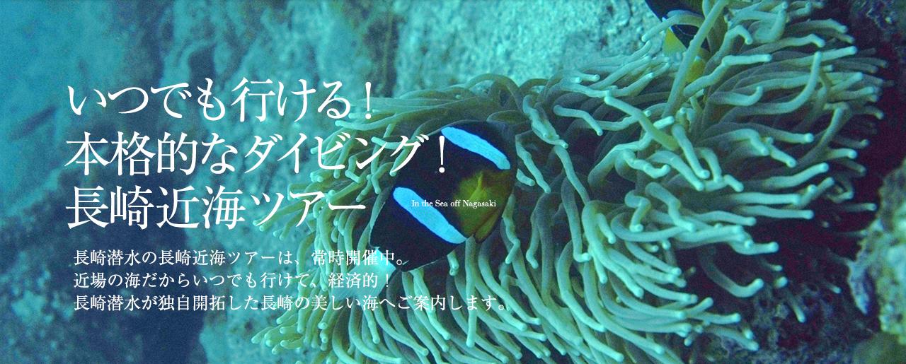 いつでも行ける!本格的なダイビング!長崎近海ツアー